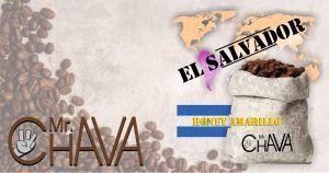 EL SALVADOR HONEY AMARILLO