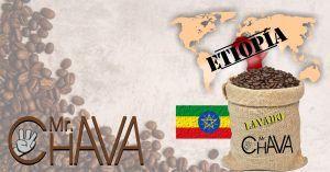 ETIOPIA LAVADO