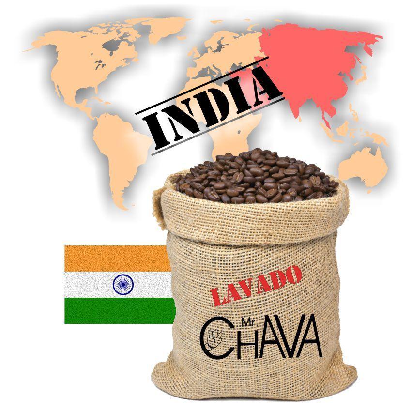 INDIA AYZENKARI CAFÉ