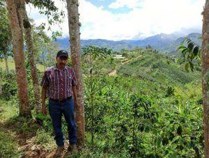 Millton Las Piedras Colombia